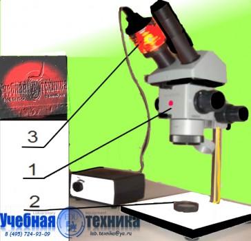 интерференционной, схемы, колеца, Ньютона ,ФПВ, ФПВ-05-2-2